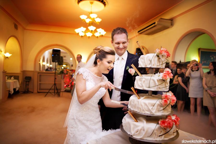 krojenie tortu tarnów