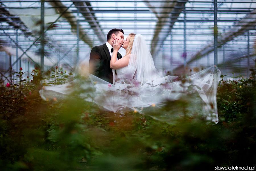 28-fotografia ślubna wojnicz -mimblogplener