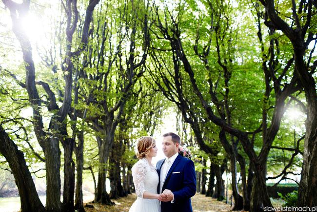 Plener ślubny Tarnów