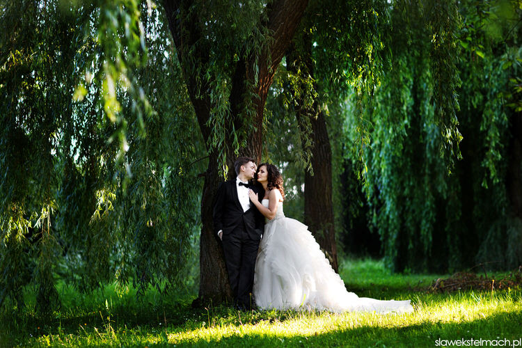 zdjęcia ślubne brzesko