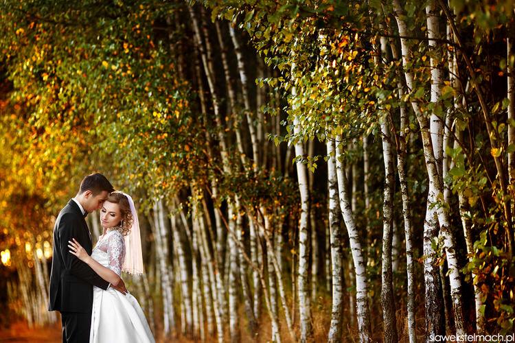 Sesja ślubna kraków