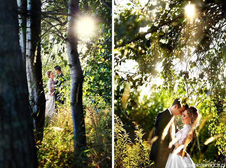 zdjęcia na łące tarów
