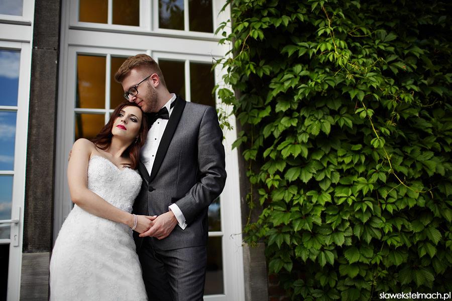 sesja ślubna wawel