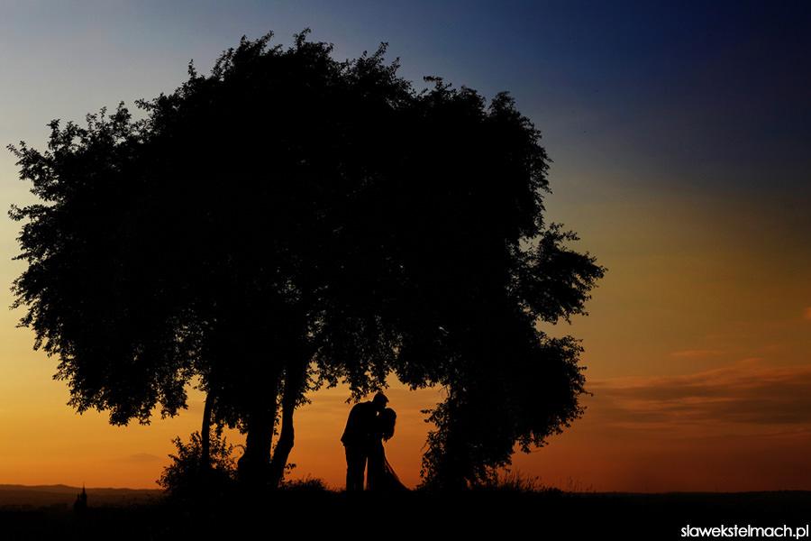 sesja ślubna plenerowa kraków