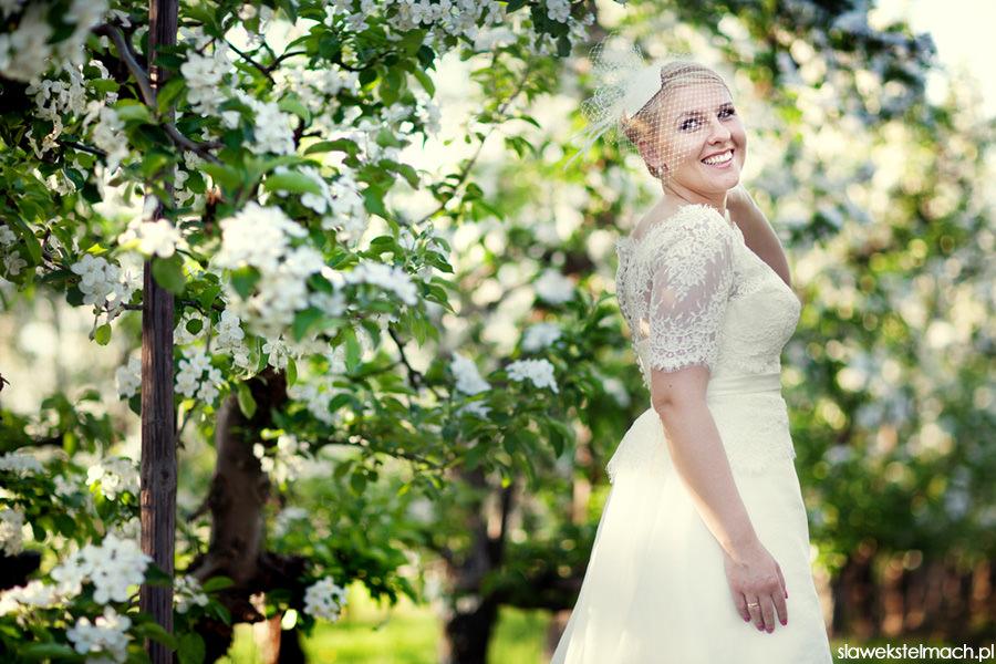 zdjęcia ślubne w kwitnących jabłoniach