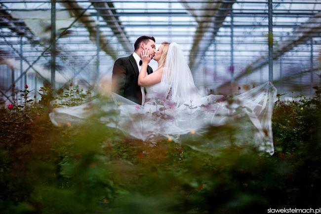 Plener ślubny Rzeszów