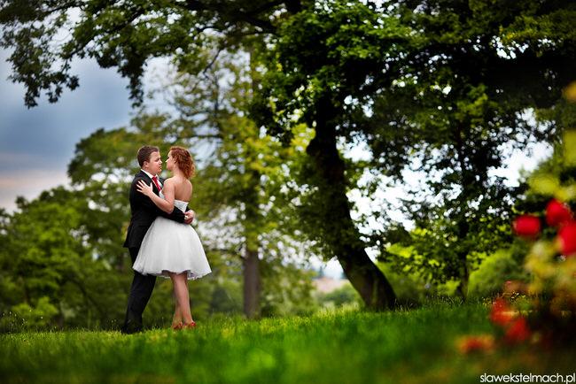 zdjęcia ślubne tuchów