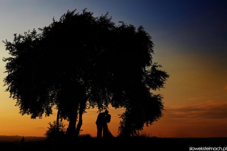 Sesja ślubna Dolina Cedronu