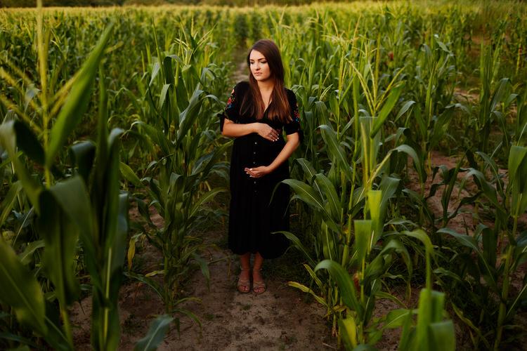 zdjęcia brzuszkowe w kukurydzy